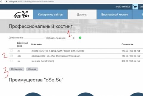 как проверить - свободен ли домен?