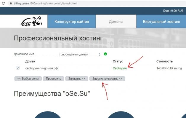 удачный результат проверки доменного имени